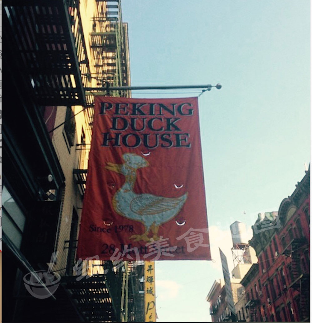 pecking-duck-house-02