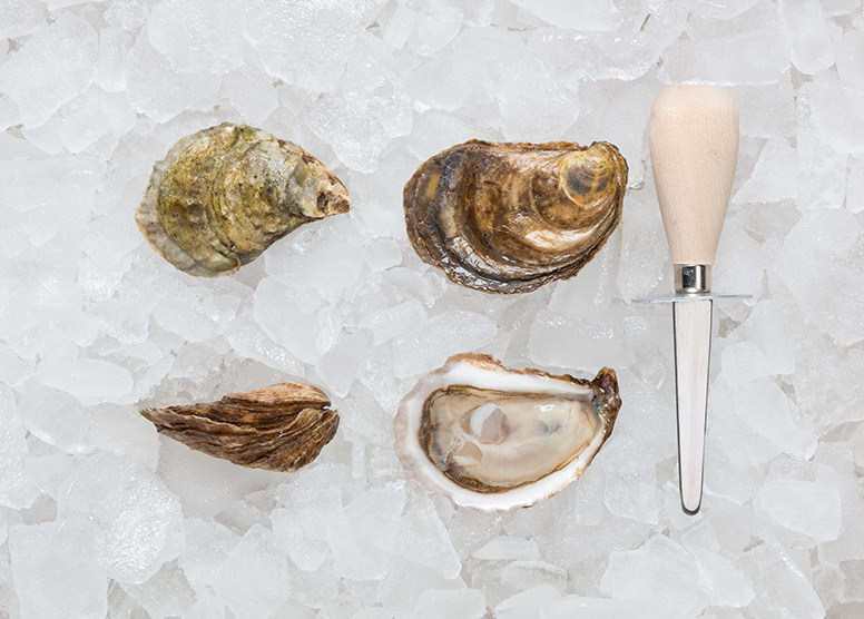 gooseberry-bay-oysters