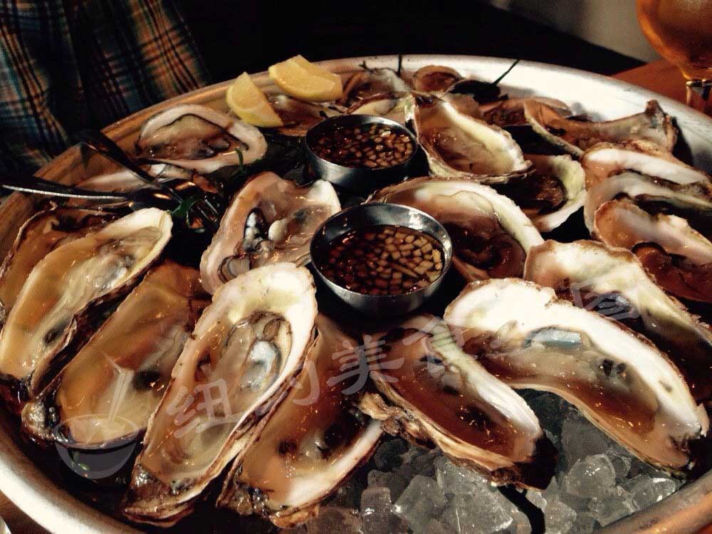 oyster-25
